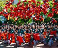 7 Things to Know About Yosakoi Sasebo Festival|「YOSAKOIさせぼ祭り」について知っておくべき7つのこと