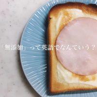 食品添加物や保存料って英語でなんて言う?これだけは知っておきたい!英語フレーズ集【保存版】