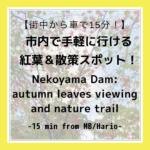 "<span class=""title"">【紅葉狩り】毎日でもOK!市内で手軽に行ける紅葉&散策スポット【させぼ】Nekoyama Dam: Great for walks & autumn leaves viewing【Sasebo】</span>"